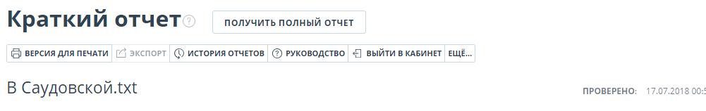 Краткий отчет на сайте Антиплагиат ру